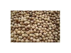 供应优质樱桃、毛桃核、银杏籽等种子