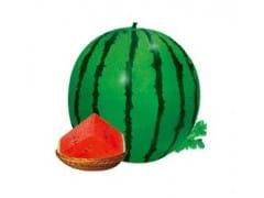 供应青池3号—西瓜种子