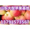 供应嘎啦,金帅,美八苹果