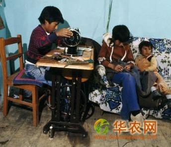 联合国推出新的电子学习课程 杜绝农业童工问题