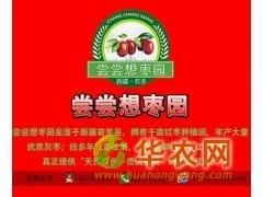 枣农直销|批发|新疆红枣|新疆大枣价格|若羌红枣