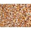 玉米目前收购价 养殖场大量求购玉米高粱大豆碎米棉粕荞麦