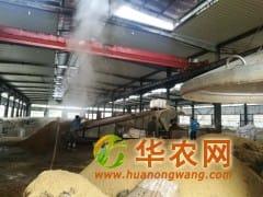 酒厂求购玉米小麦高粱碎米等酿造原料