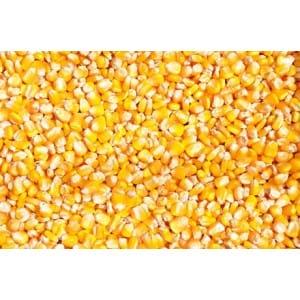 企业大批量采购玉米、大豆、大米、小麦、高粱